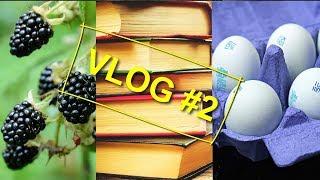 VLOG 2 Ягоды Грибы Книги Голубые яйца