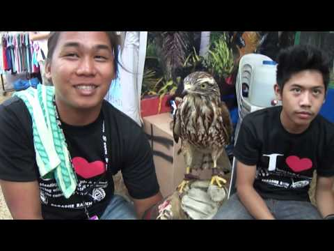Falconers of Pampanga at the 18th Annual Philippine International Hot Air Balloon Fiesta
