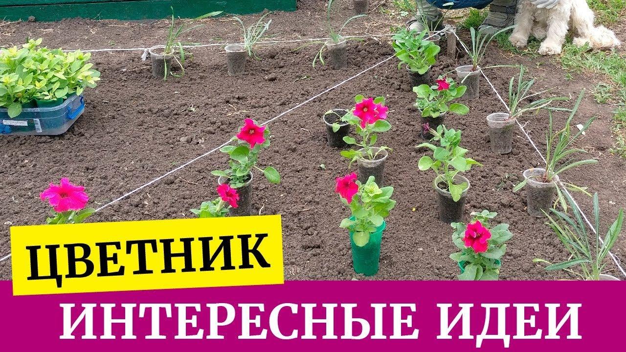 ?Как построить цветник своими руками. Создаем цветник из петуний, лобелий, газаний и пеларгонии?