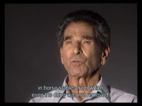 Holocaust Survivor Testimonies: Tunisia