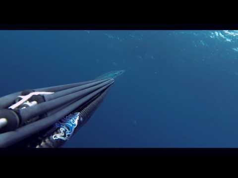 Spearfishing West Africa HD