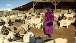 Deserts and Life The Gobi Desert Prt 1