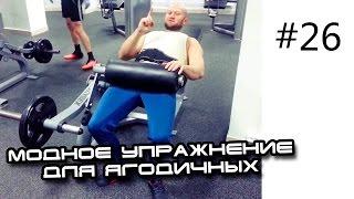 мышцы таза видео