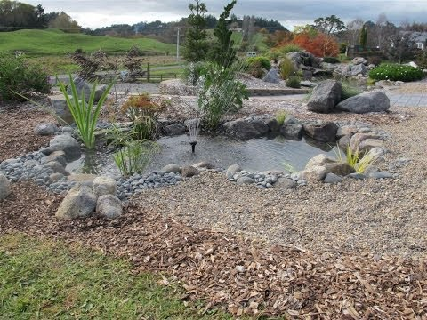 How To Build A Small Fish Pond