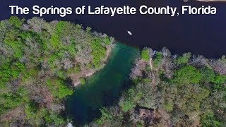 Florida Travel: Explore the Springs of Lafayette County