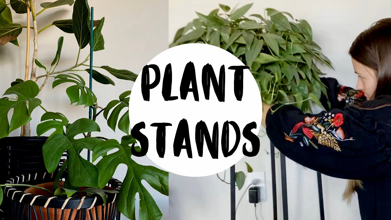 My Favorite Plant Furniture! | PLANT STAND HAUL!