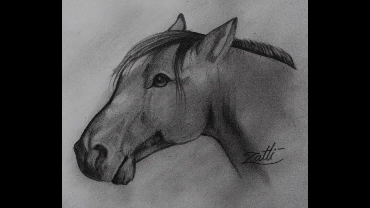 como desenhar cavalo youtube