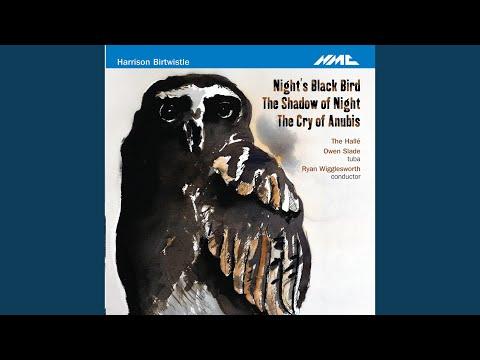 Night's Black Bird