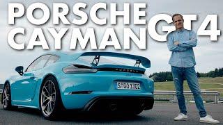 Porsche Cayman GT4   Der 420 PS Baby GT3   Matthias Malmedie
