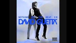 Sunshine - David Guetta & Avicii (Audio)