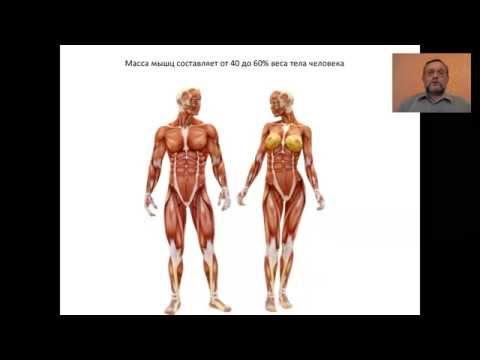 средство боли мышцах суставах