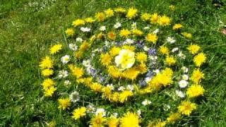 Dandelion Earth Mandala