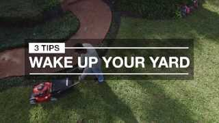 Lawn Care to Wake Up Your Yard: 3 Quick Tips for Spring
