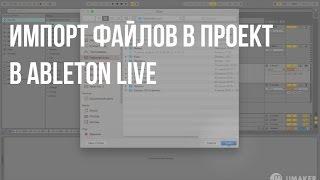 Как импортировать папку в проект Ableton live