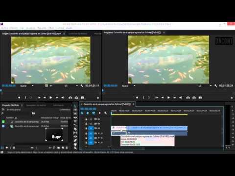 Tutorial Adobe Premiere Pro | #3 Linea de Tiempo