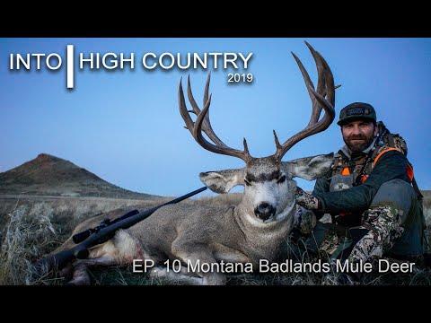 Montana Badlands Mule Deer