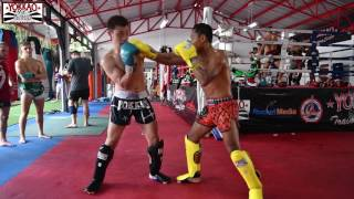 Muay Thai: Saenchai sparring with Tetsuya Yamato full VDO. Shop YOK...
