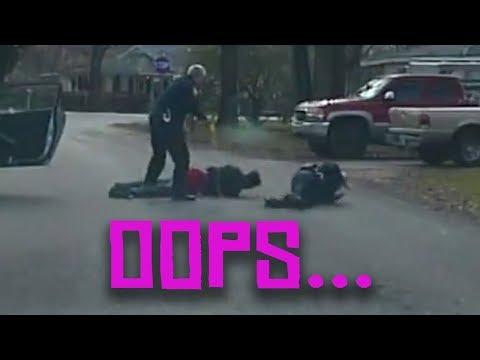 cop tases partner and dog eats car
