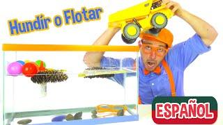 Blippi Español Hundír o Flotar | Experimentos Científicos Divertidos para Niños | Videos Educativos