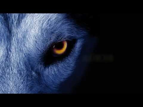 David Guetta ft. Sia - She Wolf Instrumental *