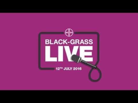 Black-grass Live