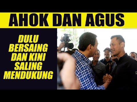 Ahok dan Agus Yudhoyono, Dulu Bersaing dan Kini Saling Mendukung