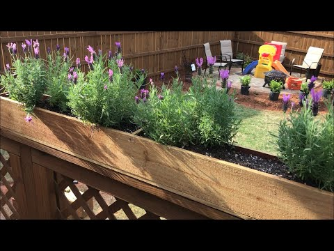 DIY Fabrications - $5 Planter Box