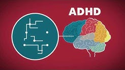 The Brain on ADHD