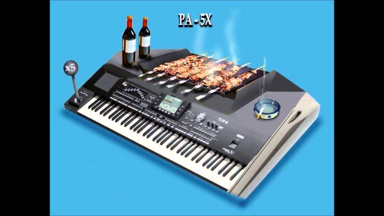 Korg pa3x manual