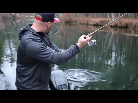 Swift River Trout Fishing