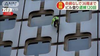 """逮捕120回 """"仏のスパイダーマン""""また超高層へ(19/11/14)"""