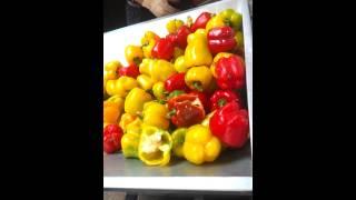 과실류 대용량 착즙기(파프리카 착즙 영상)
