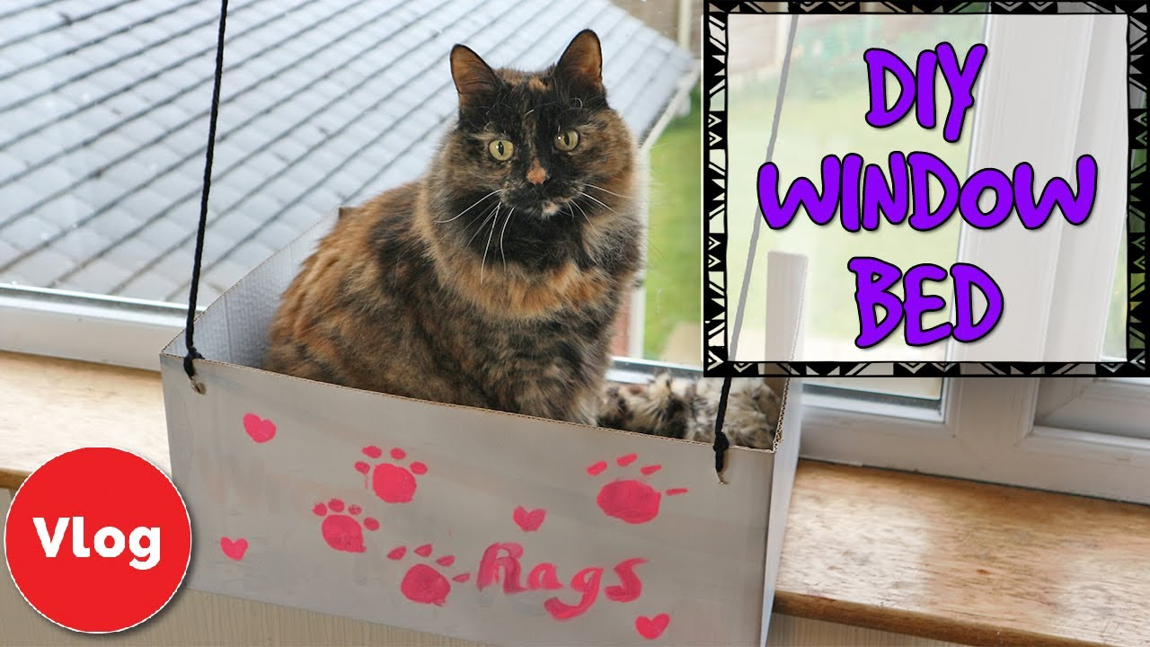 How to make a diy cat window bed fun and easy homemade for Make a cat bed out of a box