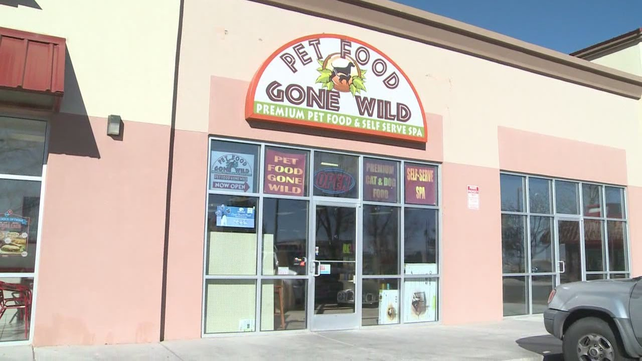Small Business Friday Pet Food Gone Wild Youtube