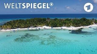 Belize: Die Rettung des Riffs | Weltspiegel