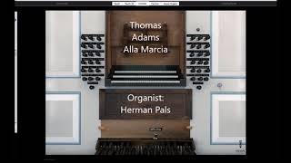 Thomas Adams Alla Marcia (Hauptwerk Tholen)