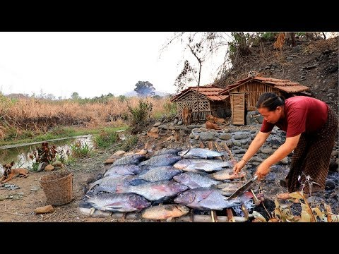 survival in the rainforest - woman found fish for dog & build home of bamboo - Eating delicious HD
