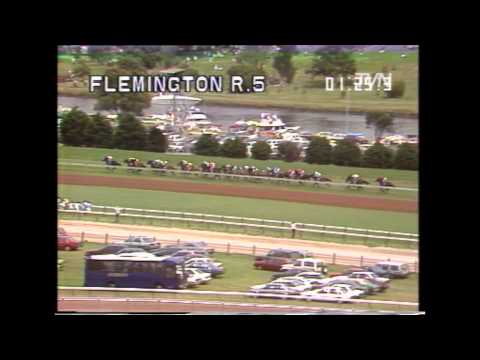 1990 Melbourne Cup - Kingston Rule