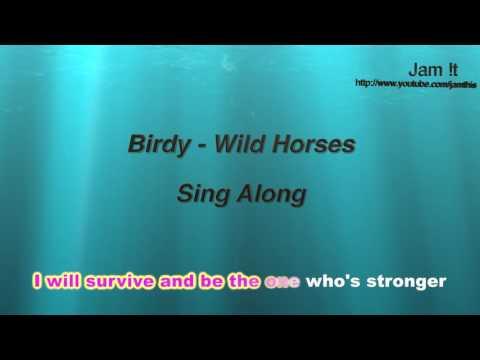 Birdy - Wild Horses (Karaoke / Sing Along - Full band instrumental)