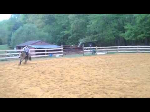 The World's Smallest Reining Horse!