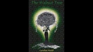 Caroline Wedd talks about writing 'The Walnut Tree.'
