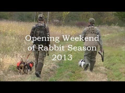 Beagle Boys Rabbit Hunting - Opening Weekend 2013 10-5-13