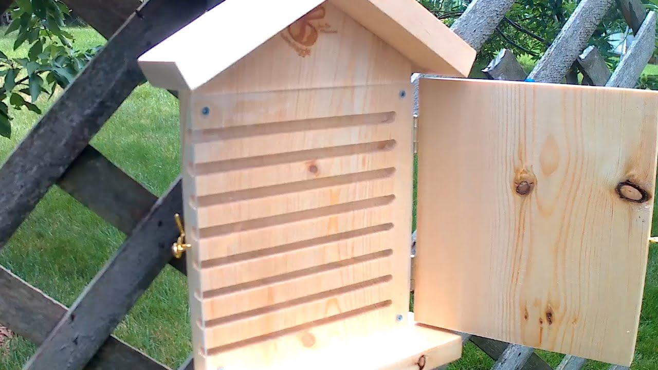 Orchard Mason Bee House Review From The Bees Waggle Week 0 Day1