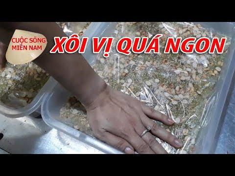 XÔI VỊ - MÓN NGON MIỀN TÂY |Nam Việt | VietNam Travel - Food