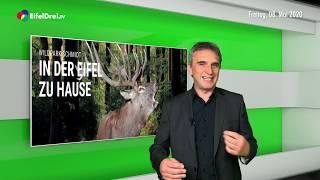 EifelDreiTV Aktuell vom 08.05.2020