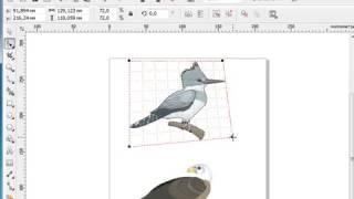 Урок 7 5 Corel Draw X5 для начинающих  Перспектива объекта