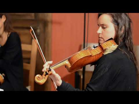 Carl Wittigs Aurora Oktett - Phlox (2nd. movement of