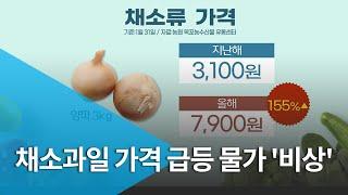 [집중2]채소ㆍ과일 가격 급등..명절 앞두고 식탁물가 …