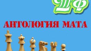 Шахматы для начинающих. Антология мата