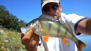 РЫБАЛКА-ФОТО-ТРОФЕЕВ.РЫБ.(Рыбалка-трофеи 2001- 2004- 2006- 2007- 2012-2013-2014г. Fishing photos.trophies., 2015-01-19T12:20:53.000Z)